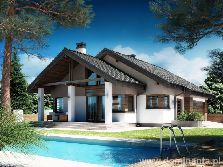 Projekt domu Nel